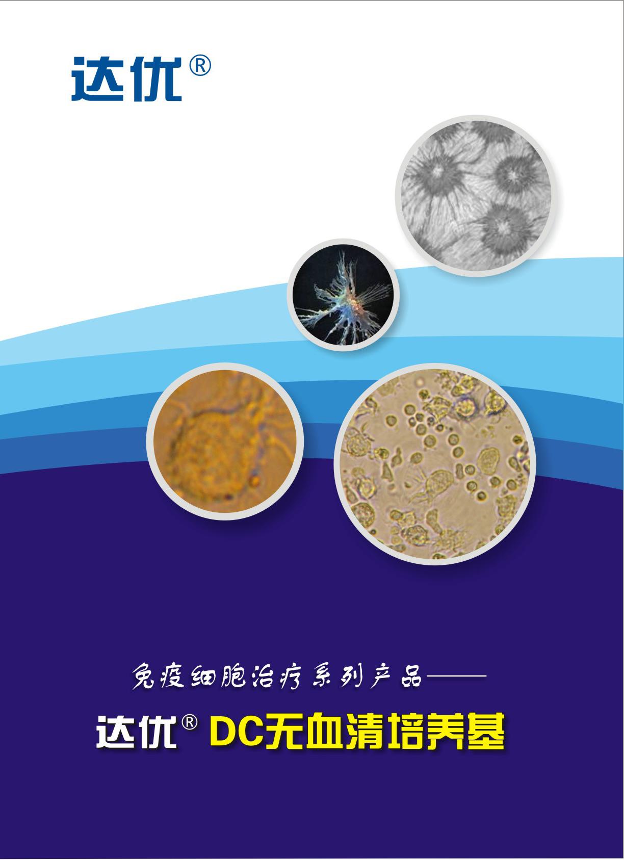 达优-树突状细胞无血清培养基
